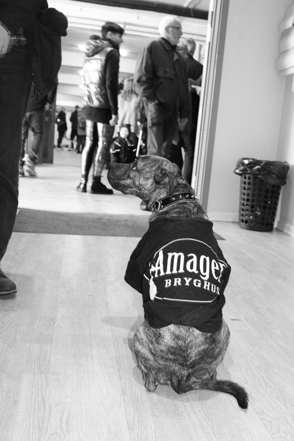 double black mash craft beer amager bryghus imperial stout release 2017 kilo doggy